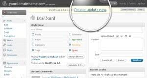 How-to-update-Wordpress-Automatic-update