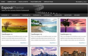 photography expose genesis theme 300x191 Optimize Your Website/Blog With Top 3 WordPress Themes