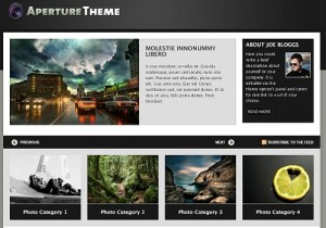 woo theme aperture 300x210 Why Woo Themes are Top Rated and Expensive?